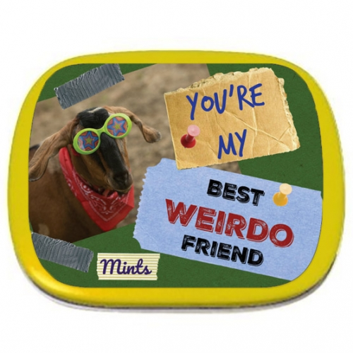 You're My Best Weirdo Friend Mints