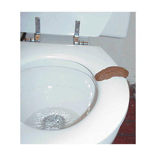 Human Poop Funny Joke Toilet PooP Bathroom Prank Fake Party Pooper Crap Turd